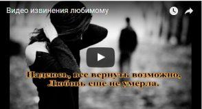 Видео извинения любимому