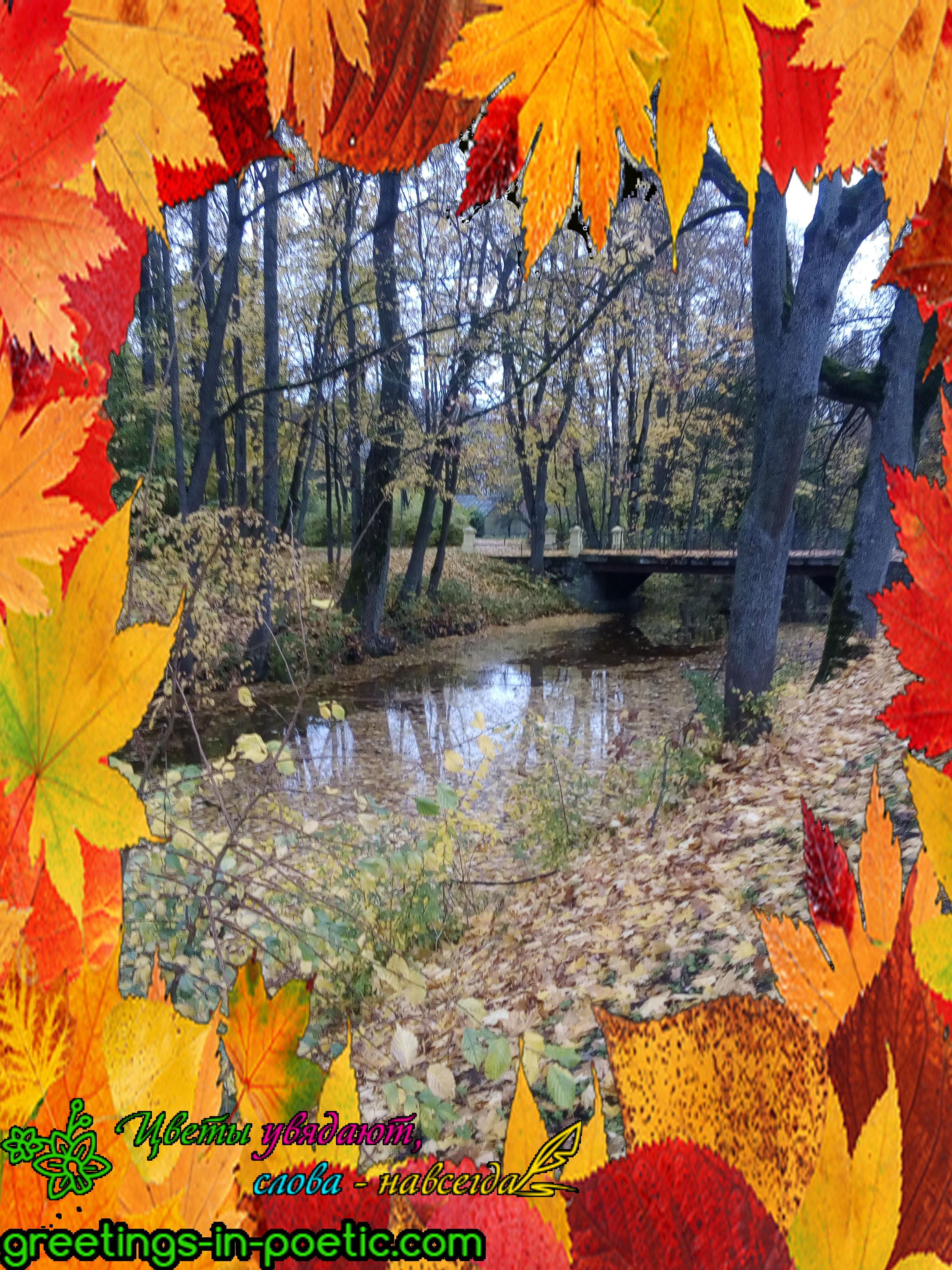 веселая-осень
