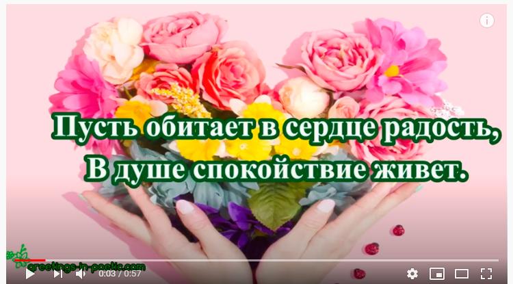 Универсальное видео с днем рождения