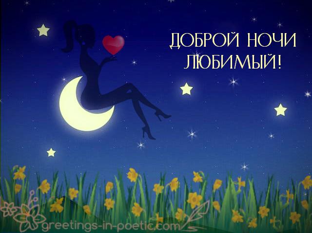 Доброй ночи любимый…