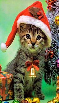 Новый-год-и-Рождество